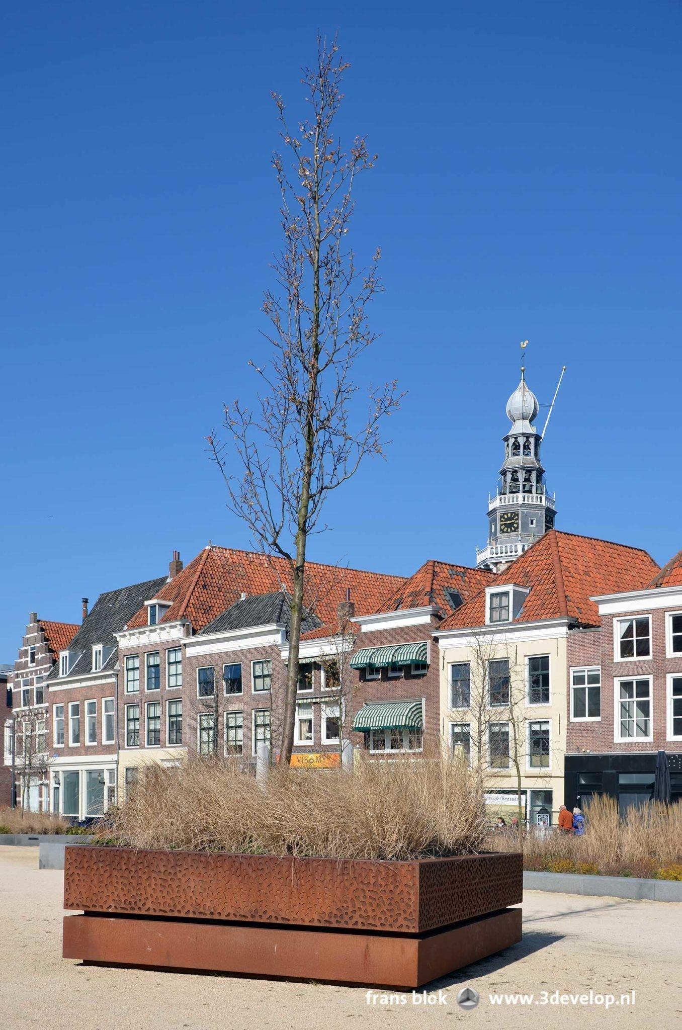 Corten stalen beplantings bak in halfverharding in het heringerichte Bellamypark in Vlissingen