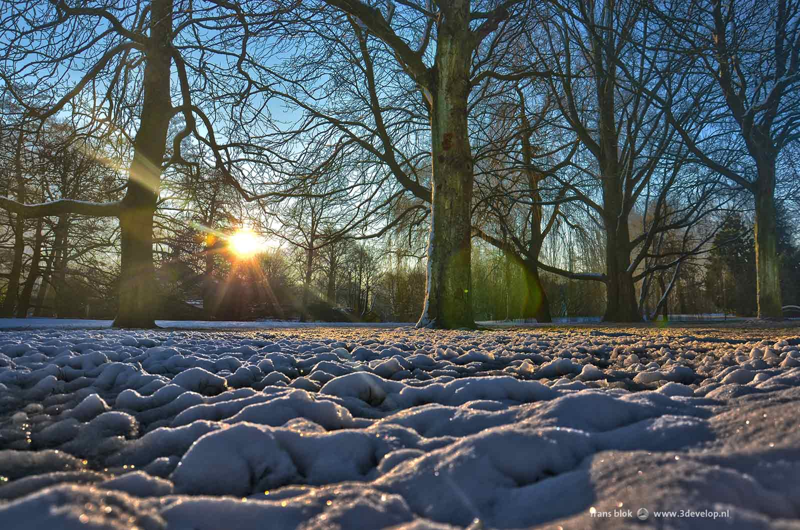 rotterdam-sneeuw2