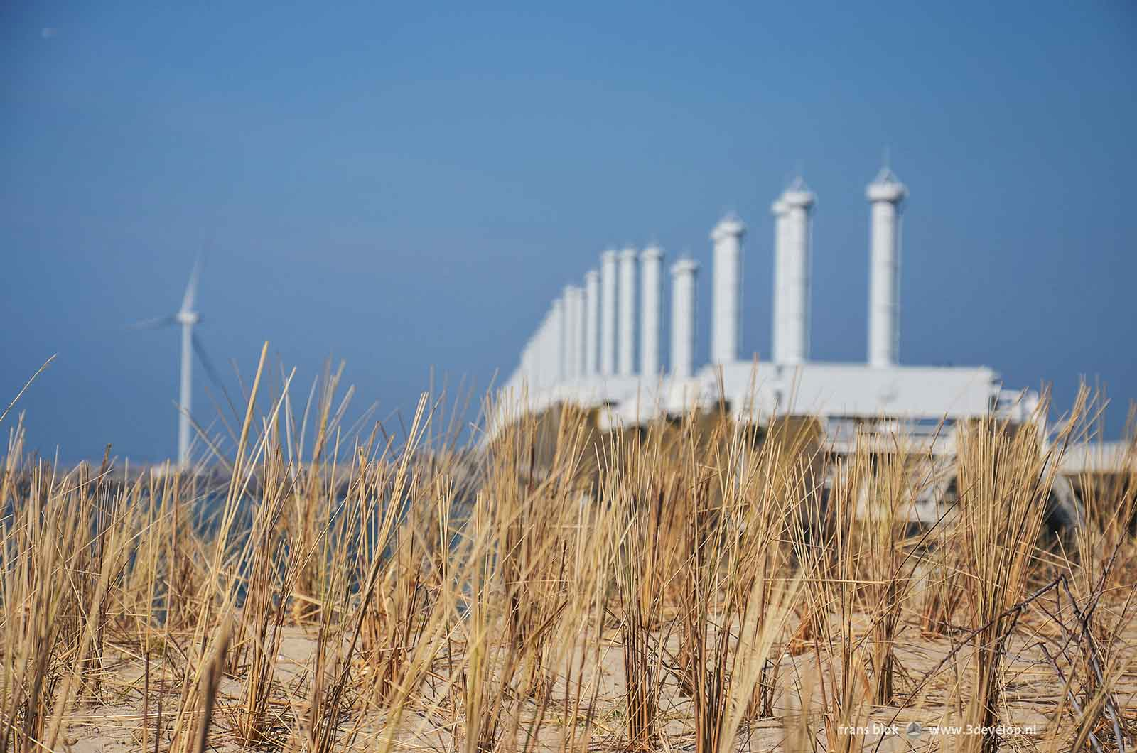 Beachgrass on the artificial island Neeltje Jans with in the background a wind turbine and the Eastern Scheldt barrier.