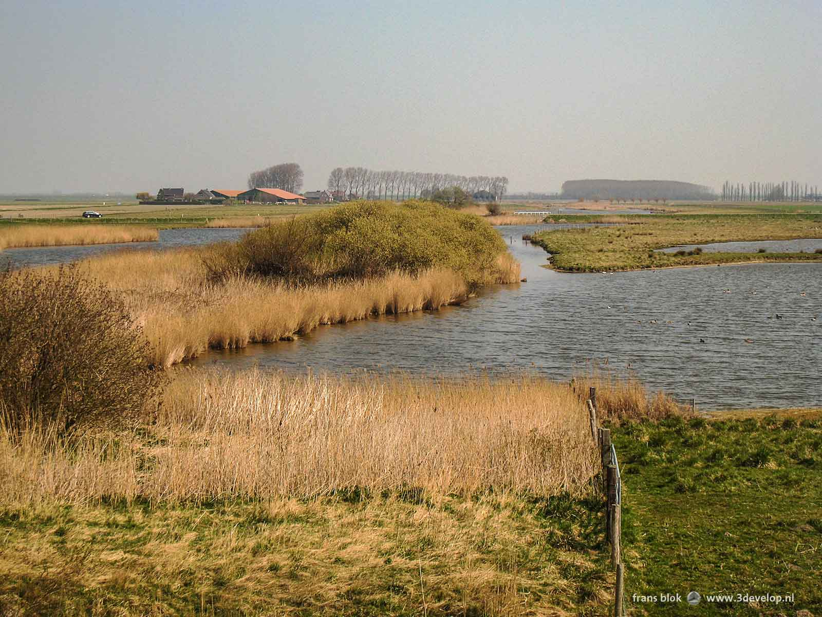 A vast landscape at St. Philipsland, Zeeland, The Netherlands, with creeks, reeds, fields and a farm.