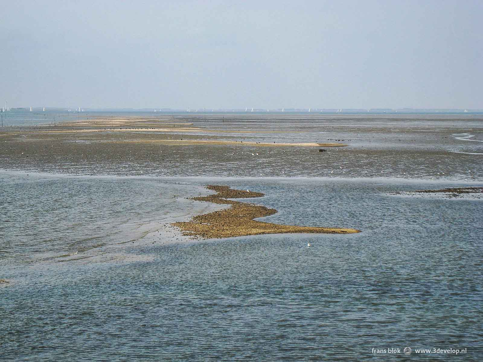 Irregularly shaped sandbars on the Eastern Scheldt, as seen from the dike of the island of Schouwen-Duiveland between Zijpe and Zierikzee