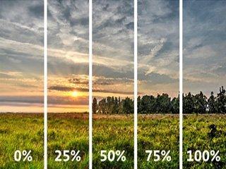 Ter illustratie van het fade-concept in Photoshop: vijf verschillende versies van een foto, met respectievelijk o, 25, 50, 75 en 100 procent van een filter-effect