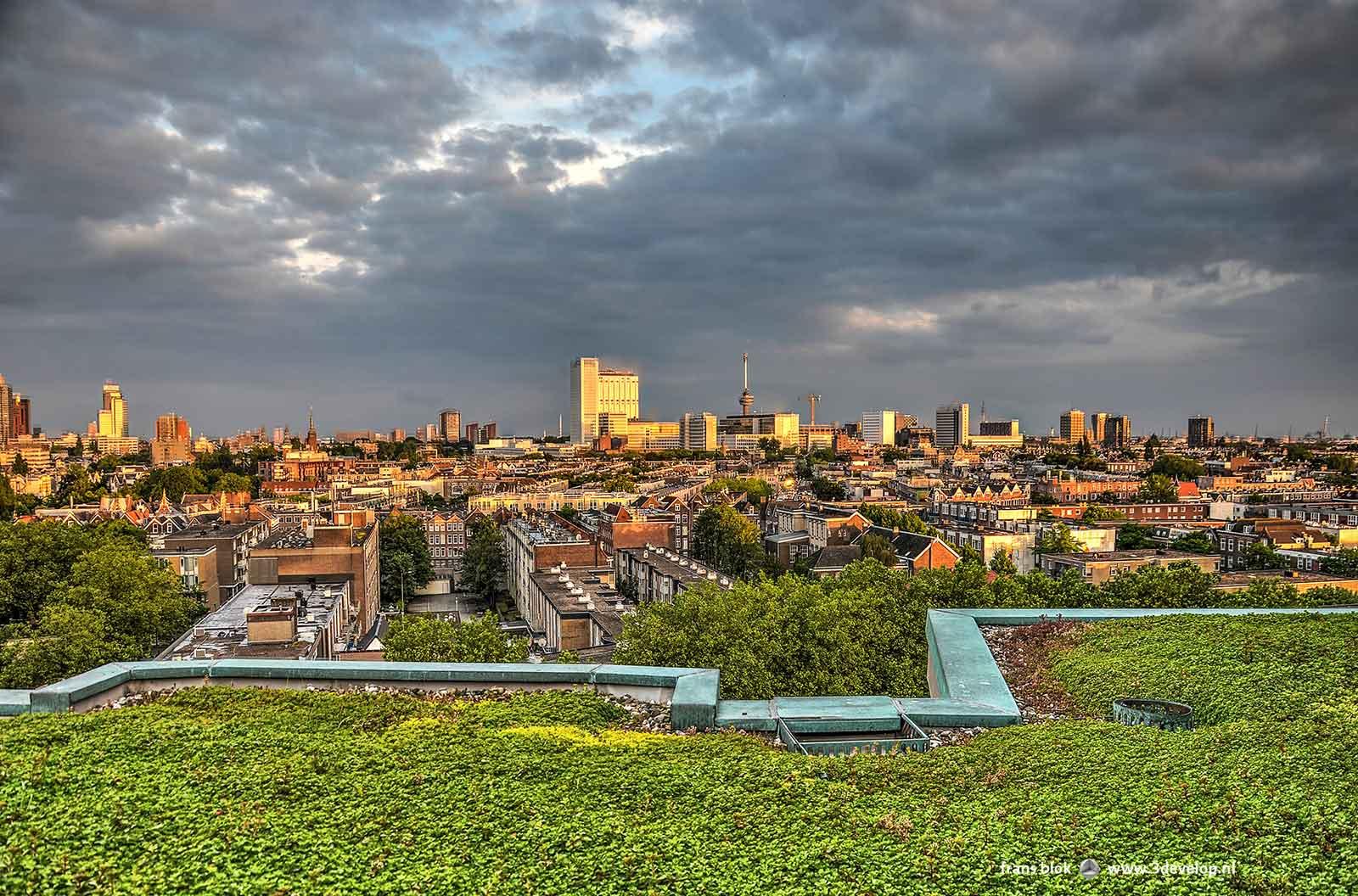 De Rotterdamse Skyline, met onder andere Erasmus MC en Euromast, vangt de laatste zonnestralen. Op de voorgrond sedumbegroeiing en dakrand van het Groothandelsgebouw