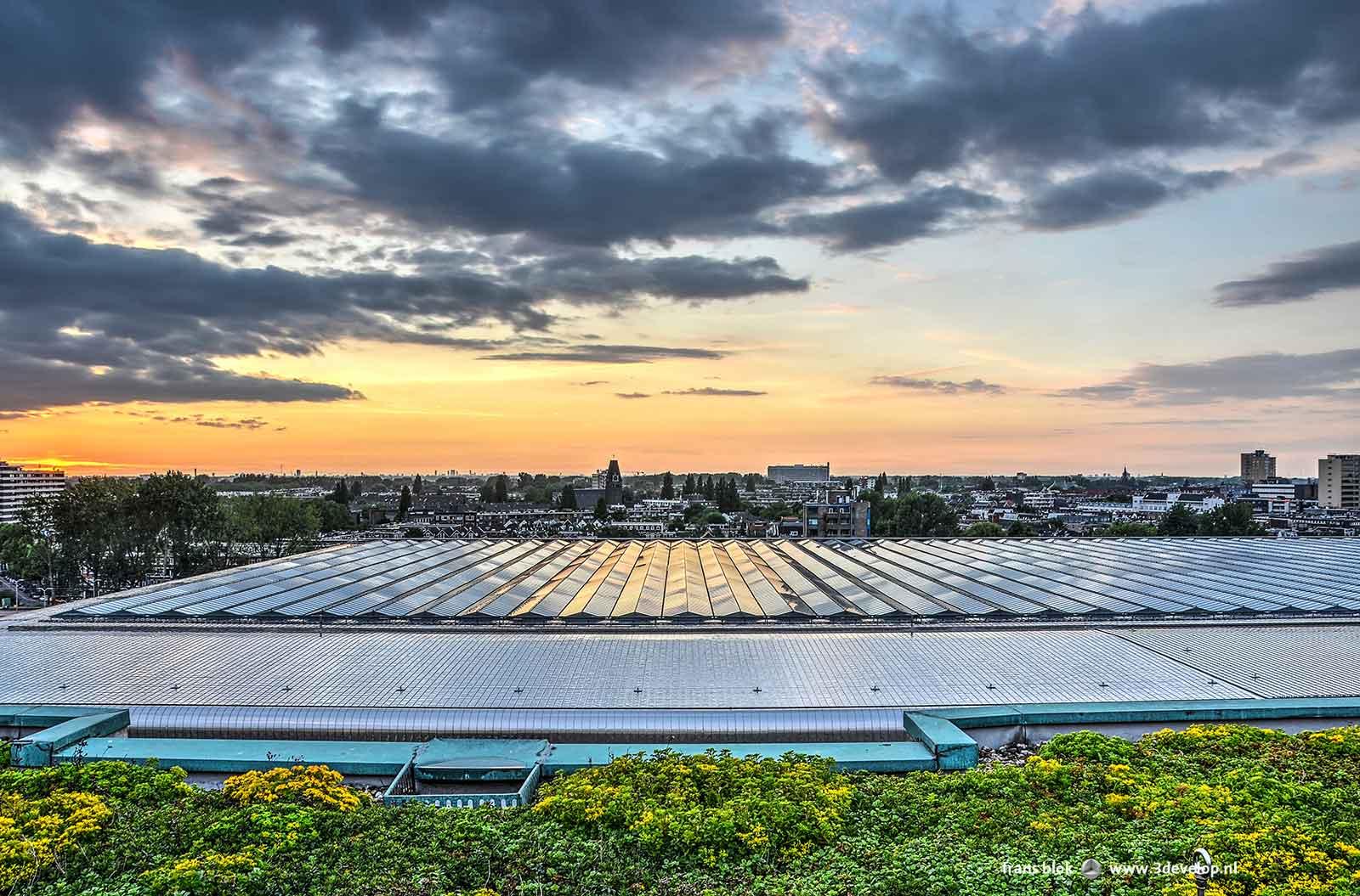 Het dak van het Centraal Station, roestvrijstaal en glas, gezien vanaf het dak van het Groothandelsgebouw bij zonsondergang, met een veldje sedum op de voorgrond.