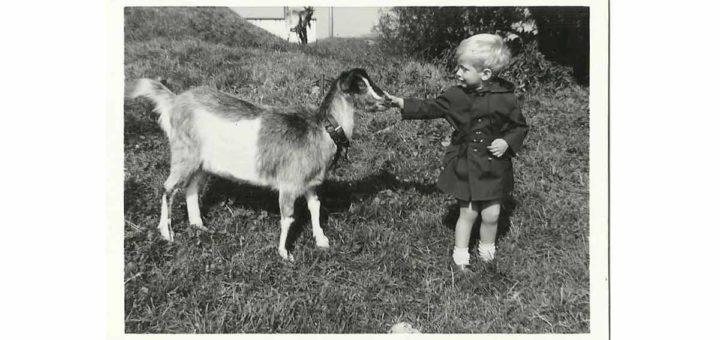 Zwartwitfoto van een tweejarig jongetje en een geitje, gemaakt in de zomer van 1964