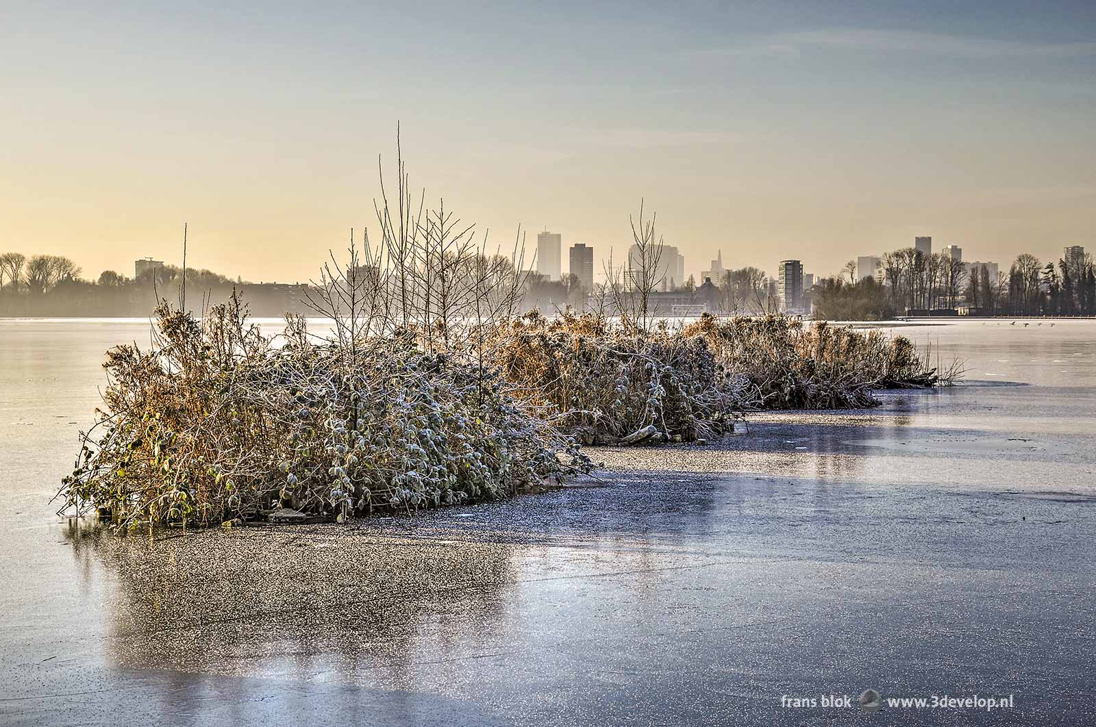 Photo of a number of little islands, with frost-covered vegetation in frozen over Lake Kralingen with the Rotterdam skyline as a backdrop