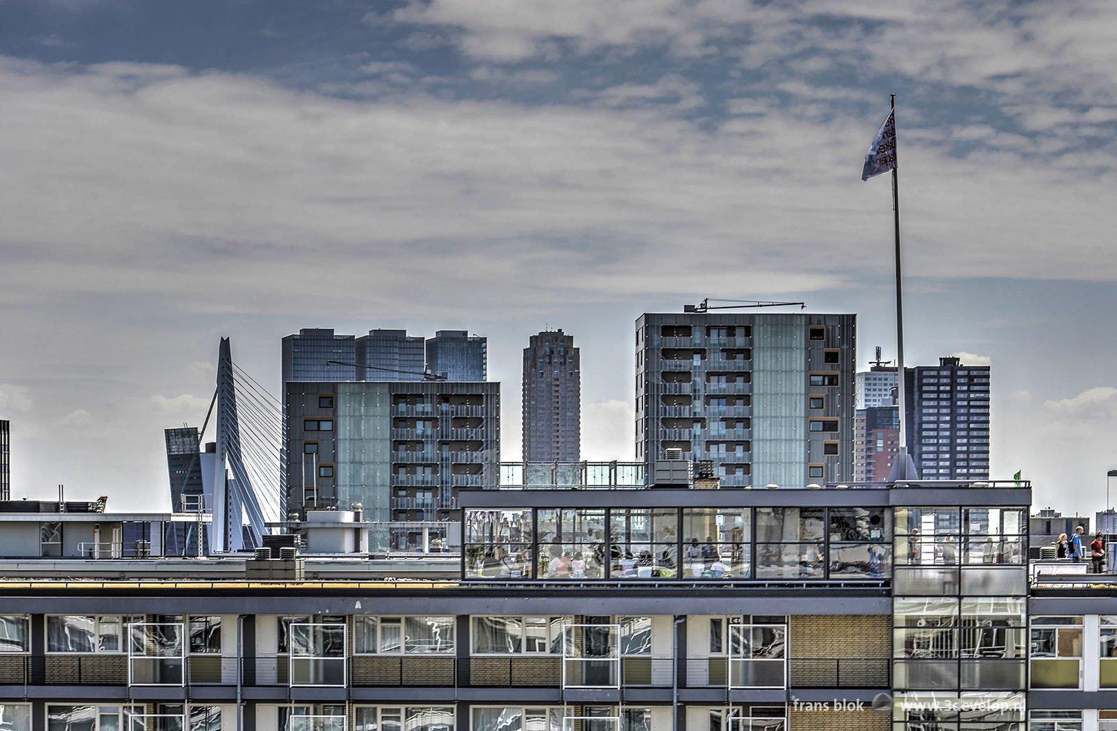Theetuin op een van de Lijnbaanflats met op de achtergrond onder andere de Erasmusbrug, tijdens de Rotterdamse Dakendagen