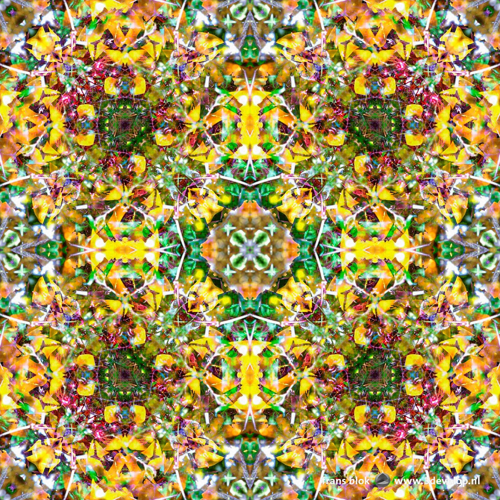 Kleurrijk caleidoscopisch symmetrisch patroon gemaakt in Photoshop met als basis een foto van een struik met rode bessen in de herfst.