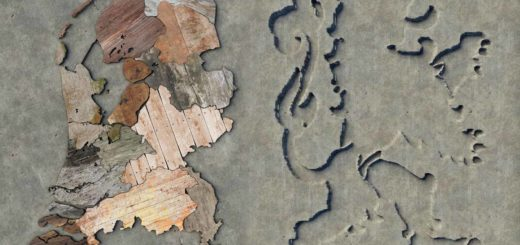 Map of the Netherlands made out of scrapwood, rotated 20 degrees anticlockwise, with next to it the Dutch lion as a recessed surface in the concrete of the wall