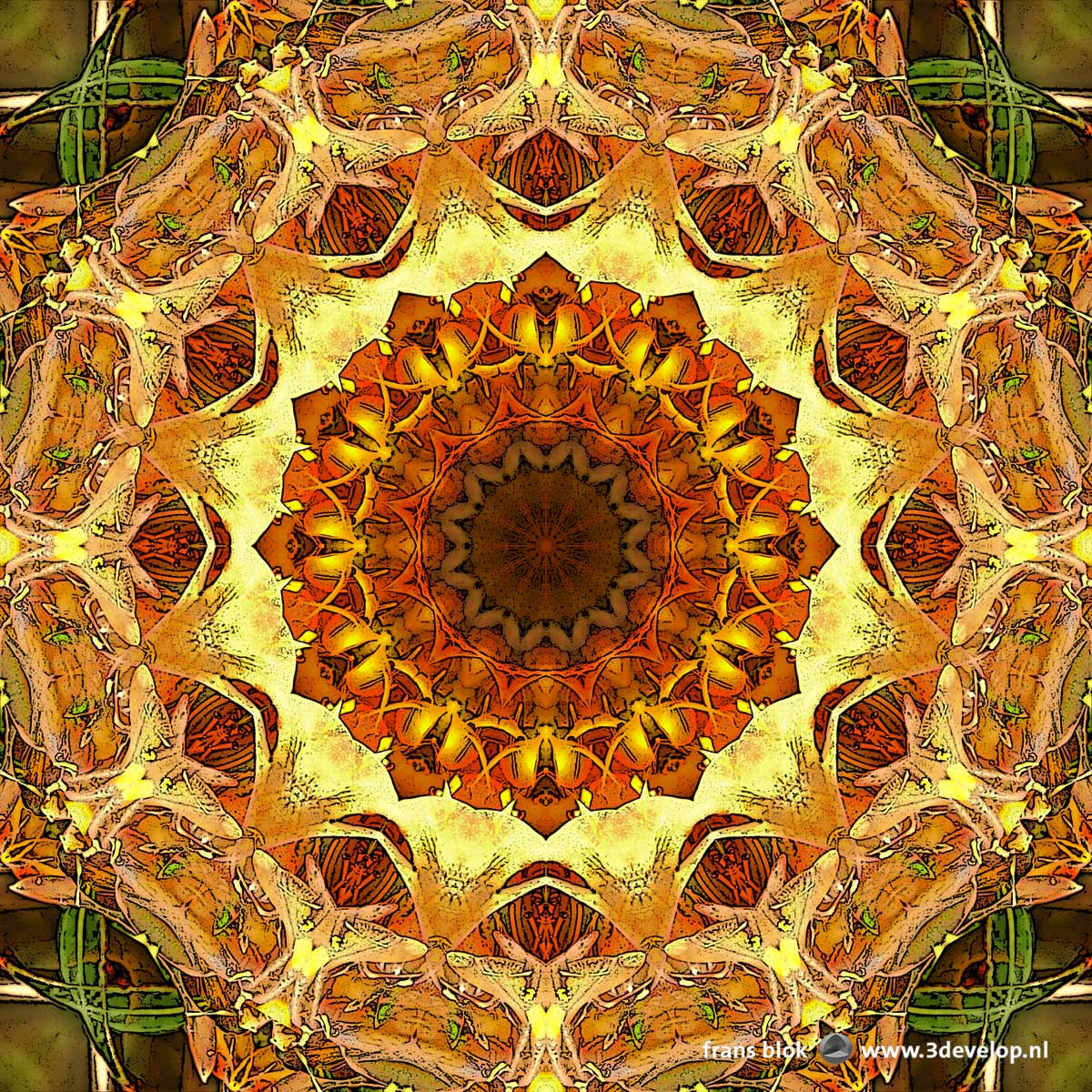 A circular, madala-esque flowery image in yellow and orange hues, based on a photograph of azaleas in springtime