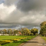 Long straight road with a line of trees and a farm in the North East Polder in the Netherlands