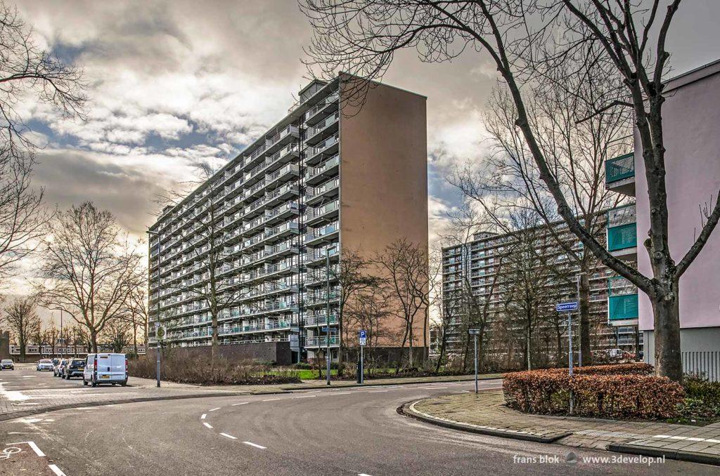 Two apartments slabs from de nineteen sixties in Zalmplaat neighbourhood in the Rotterdam district of Hoogvliet