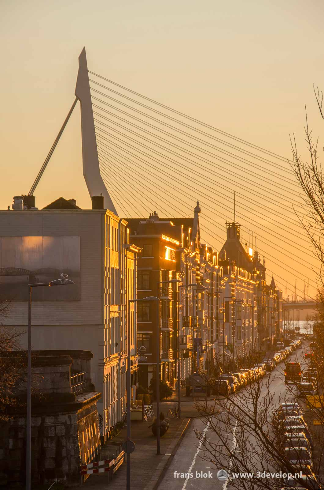 The northern quay of Noordereiland (North Island) in Rotterdam, with erasmus bridge in the background, captured by the light of the setting sun.