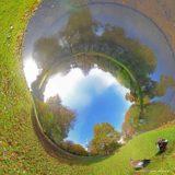 Buispanorama van Het Park, Rotterdam, met twee nijlganzen en de Euromast, gemaakt op een zonnige dag in de herfst
