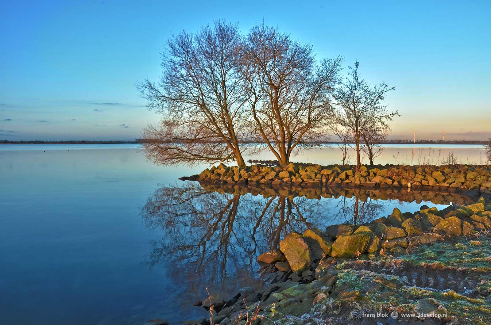 De Korendijkse Slikken op Paasochtend 2015: reflectie van bomen in het Haringvliet
