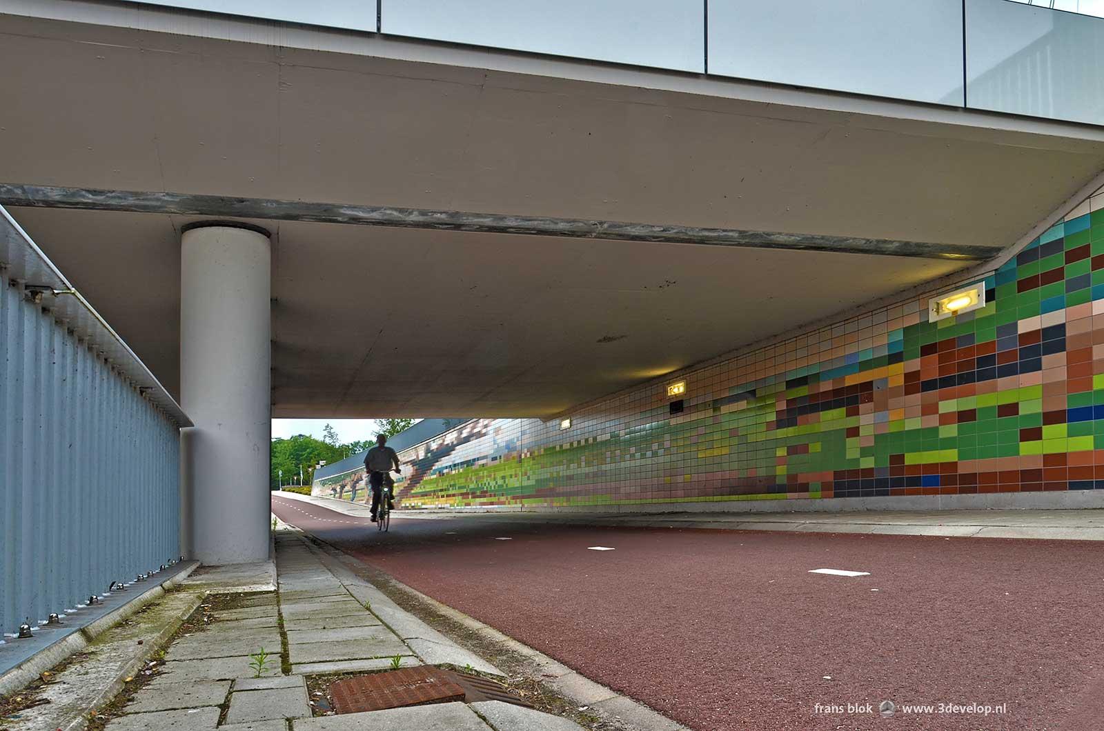 Van Kregtentunnel in Wierden: gedeelte voor fietsers en voetgangers, met zicht op een van de schilderijen van Fedor van Kregten, Meester van de Beesten, die gebruikt zijn als wandversiering