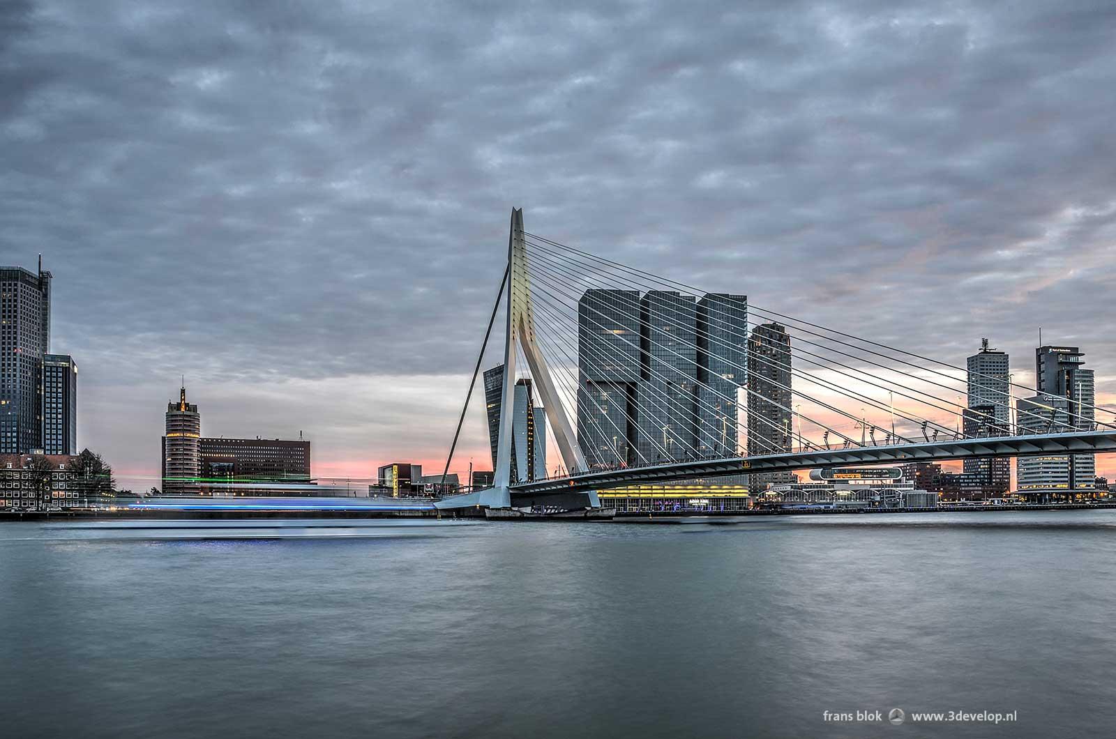 Avondbeeld van de Nieuwe Maas en de Kop van Zuid in Rotterdam, met de Erasmusbrug en diverse gebouwen waaronder de Maastoren, het gerechtshof, de Erasmusbrug en de Rotterdam