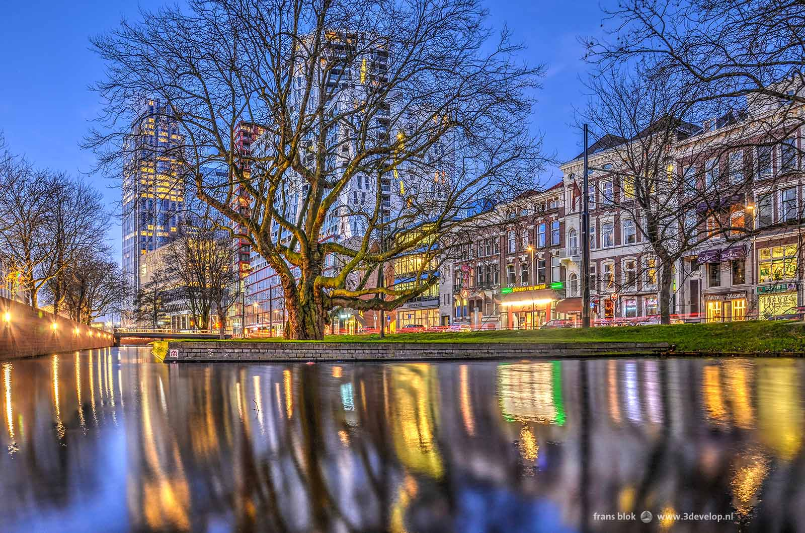 Evening photograph of Rotterdam: westersingel during the blue hour
