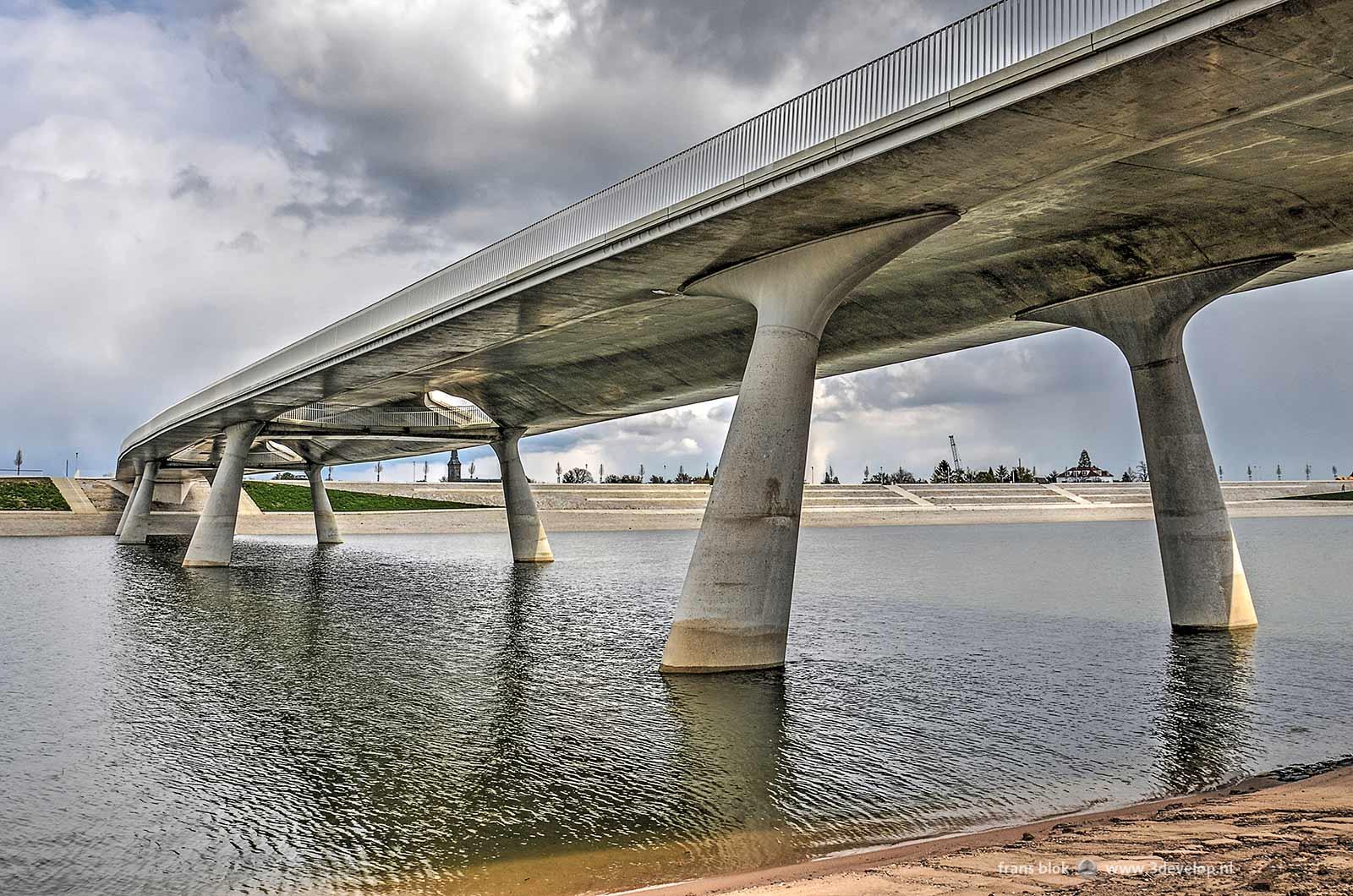 De Lentloper, de brug over de Spiegelwaal in Nijmegen, gezien vanaf het eiland Veur-Lent met op de achtergrond de Lentse Warande