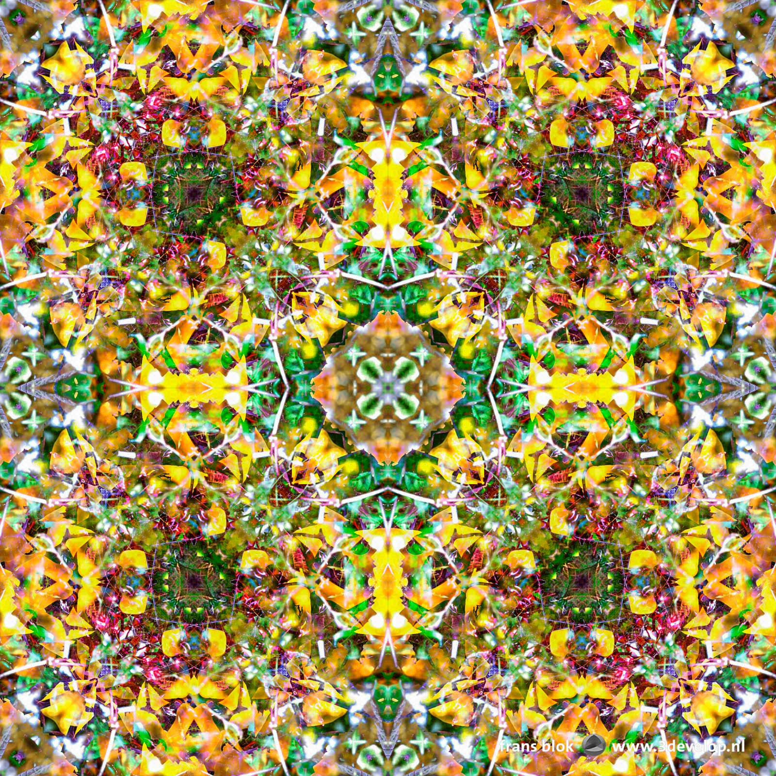 Colorful kaleidoscopic symmetric pattern made in Photoshop based on a photograph of a tree with red berries in autumn