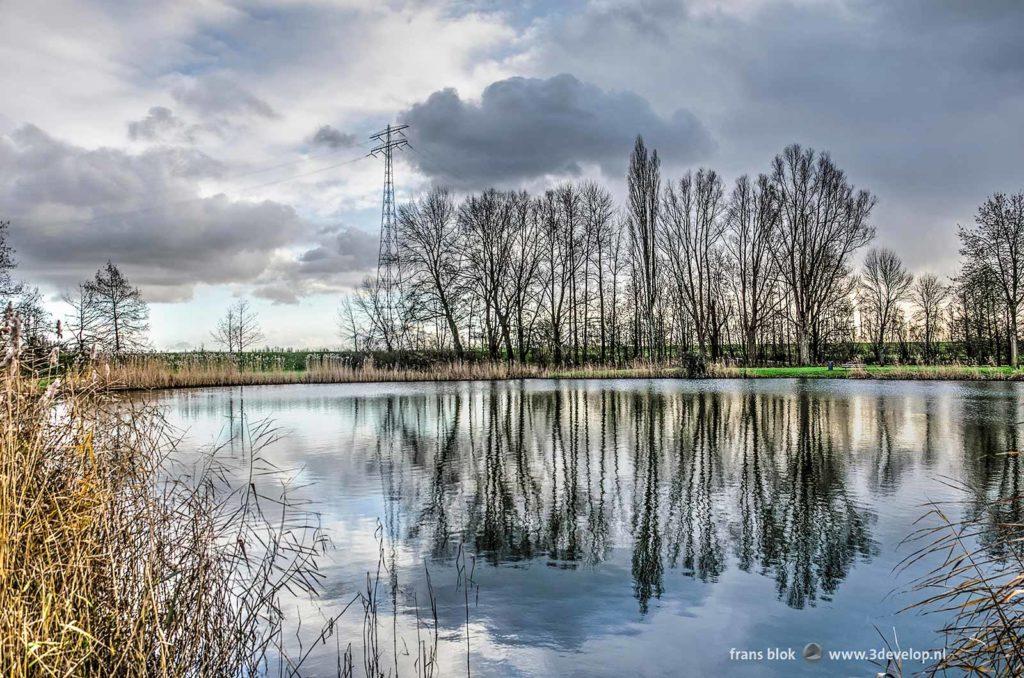 """""""Het Wiel"""", een klein meertje omzoomd door riet, struiken, bomen en gras bij de Zalmplaat in Hoogvliet"""