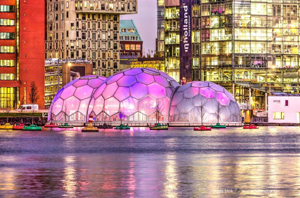 Avondfoto van de Rijnhaven in Rotterdam, met drijvende paarse bollen, een drijvend bos, moderne architectuur en een ontsierende witte bestelbus