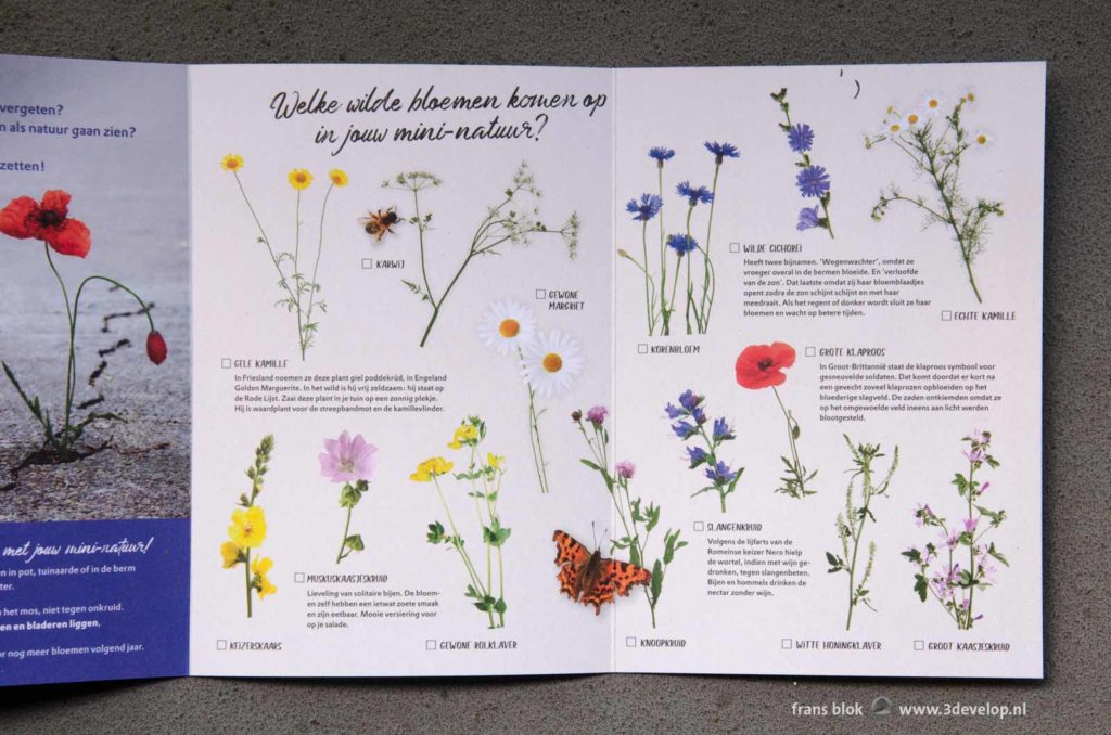Folder met veldbloemen bij een pakket met zaadjes verspreid door Natuurmonumenten om de bijen te steunen