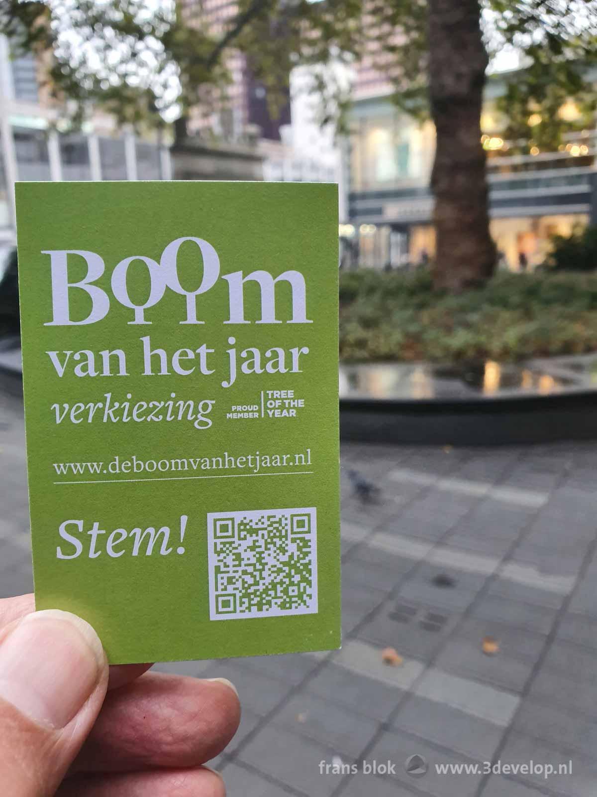 Kaartje met oproep te stemmen voor de Boom-van-het-Jaarverkiezing met op de achtergrond een van de kandidaten: de Lijnbaanplataan in Rotterdam