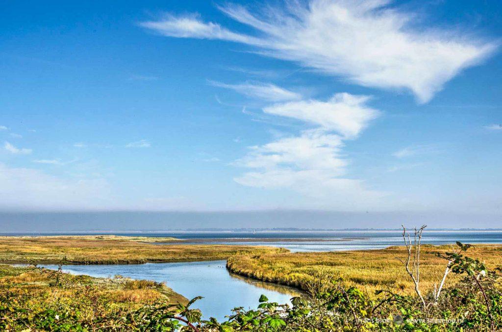 Landschap met kreken en lage vegetatie in natuurgebied de Kwade Hoek op het eiland Goeree-Overflakkee