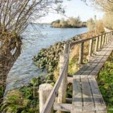 Footpath on a wooden walkbridge along Oude Maas river in Carnisse Grienden nature reserve near Rotterdam, The Netherlands