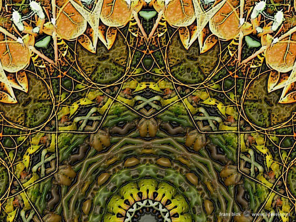 Detail van een geometrisch, botanisch, kaleidoscopisch digitaal kunstwerk getiteld Dyson Sphere