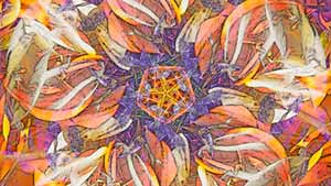 Excerpt of a colorful, kaleidoscopic work called Hocus Crocus, based on a photograph of blooming crocuses in springtime