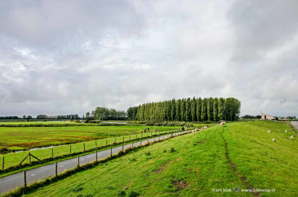 Hiking trail on a grassy dike near Zuidland on the island of Voorne-Putten, The Netherlands